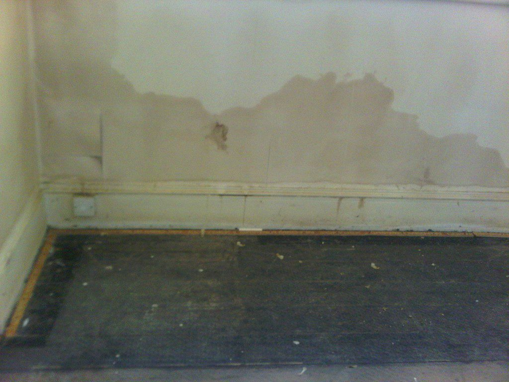 Damp explained the problems and solutions to damp - Damp proofing paint for exterior walls ...